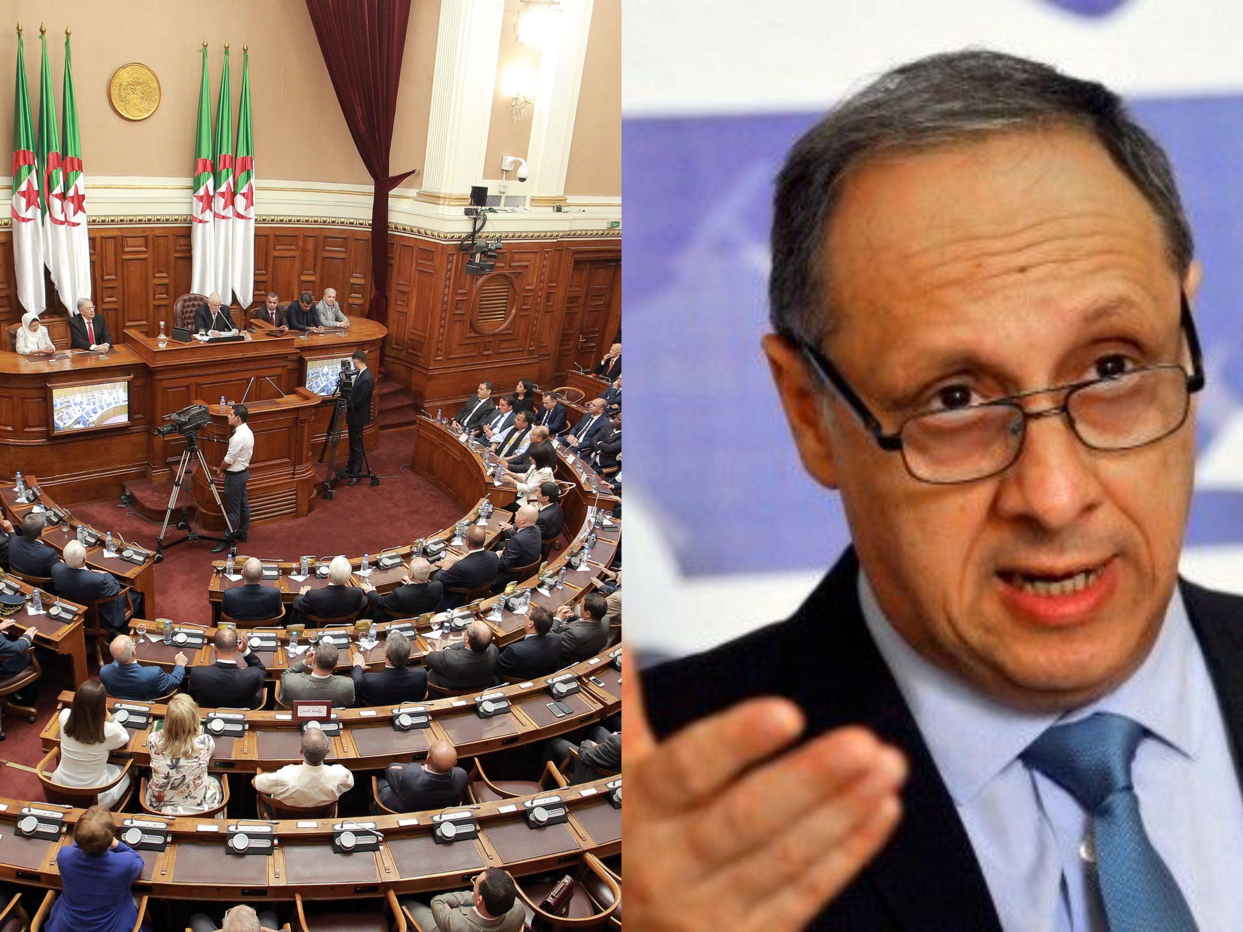 مقابلة : ما هي الإيجابيات والسلبيات في مشروع تعديل الدستور الجزائري الذي سيُعرض على الجزائريين؟